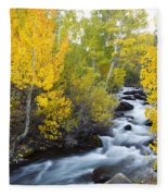 Autumn Stream V Fleece Blanket