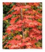 Autumnal Acer Fleece Blanket