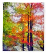 Autumnal Rainbow Fleece Blanket