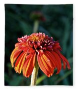 Autumn's Cone Flower Fleece Blanket