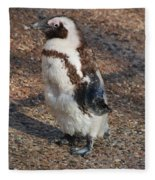 Baby African Penguin Fleece Blanket
