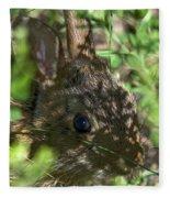 Baby Eastern Cottontail Rabbit Dmam011 Fleece Blanket