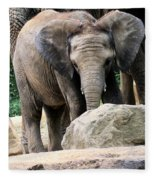 Baby Elephant Fleece Blanket