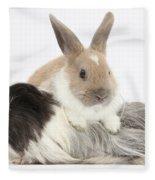 Baby Rabbit And Long-haired Guinea Pig Fleece Blanket