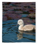 Baby Swan Fleece Blanket