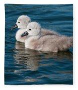 Baby Swans Fleece Blanket