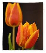 Baby Tulips Close Up Macro Fleece Blanket