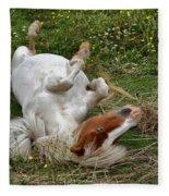 Back Scratching Fleece Blanket
