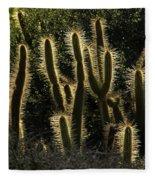 Backlit Cactus Fleece Blanket