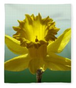 Backlit Daffodil Fleece Blanket