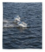 Backlit Swans Fleece Blanket
