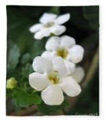 Bacopa Named Snowtopia Fleece Blanket