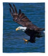Bald Eagle On The Hunt Fleece Blanket