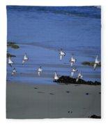 Band Of Seagulls Fleece Blanket