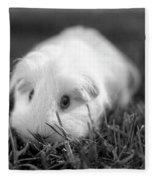Barbie Guinea Pig Fleece Blanket