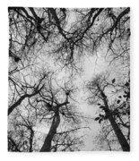 Bare Cypress Fleece Blanket