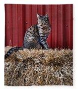 Barnyard Cat Fleece Blanket