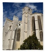 Basilica Of Saint Mary Madalene Back View Fleece Blanket