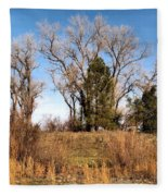 Bass Pond Trees 2012 Fleece Blanket