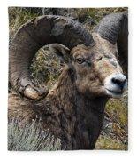 Battle Remnants Fleece Blanket