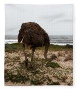 Beach Bird Fleece Blanket