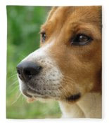 Beagle Gaze Fleece Blanket