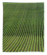 Bean Field, Holland, Manitoba Fleece Blanket