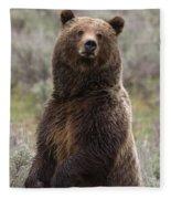 Bear 399 Fleece Blanket