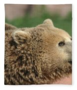 Bear Profile Fleece Blanket