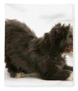 Bearded Collie Pup Fleece Blanket