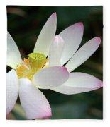 Beatutiful Wet Lotus Fleece Blanket