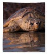 Beaufort The Turtle Fleece Blanket