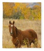 Beautiful Chestnut Horse Fleece Blanket