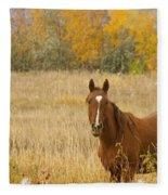 Beautiful Grazing Horse Fleece Blanket