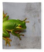 Beautiful American Green Tree Frog On Grunge Background  Fleece Blanket