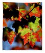Beautiful Autumn Fleece Blanket
