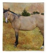 Beautiful Buckskin Fleece Blanket