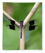 Beautiful Dragonfly Fleece Blanket