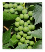 Beautiful Grapes Fleece Blanket
