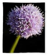 Beautiful Purple Flower With Black Background Fleece Blanket
