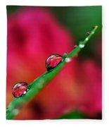 Beauty After The Rain Fleece Blanket
