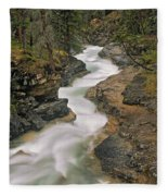 Beauty Creek, Banff National Park Fleece Blanket