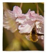 Bee Fly Feeding 1 Fleece Blanket