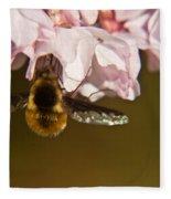 Bee Fly Feeding 5 Fleece Blanket