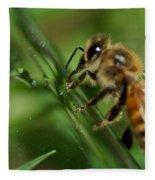 Bee In Green Fleece Blanket