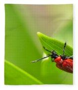 Beetle Fleece Blanket
