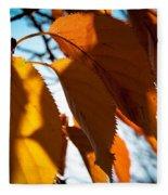 Before The Leaves Fall Fleece Blanket