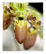 Beige Lady Slipper Orchids Fleece Blanket