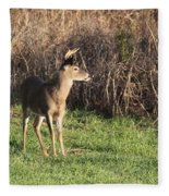 Being Aware - Deer Fleece Blanket