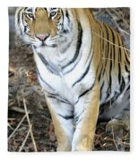Bengal Tiger In Pench National Park Fleece Blanket